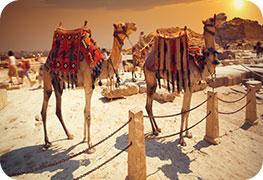 egypt-etourist-visa