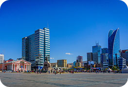 mongolia-tourist-visa