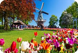 netherlands-visa-image