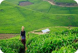 rwanda-econference-visa