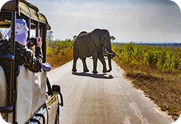 south-africa-visa-image