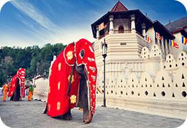 sri-lanka-business-visa