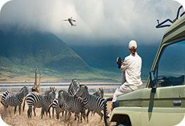 tanzania-visa-image